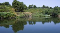parco-nazionale-aspromonte-1.jpg