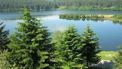 parco-nazionale-sila-1.jpg