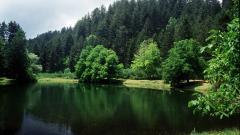 parco-nazionale-sila-3.jpg