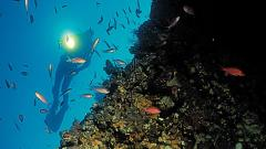 area-marina-capo-rizzuto-gallery.jpg